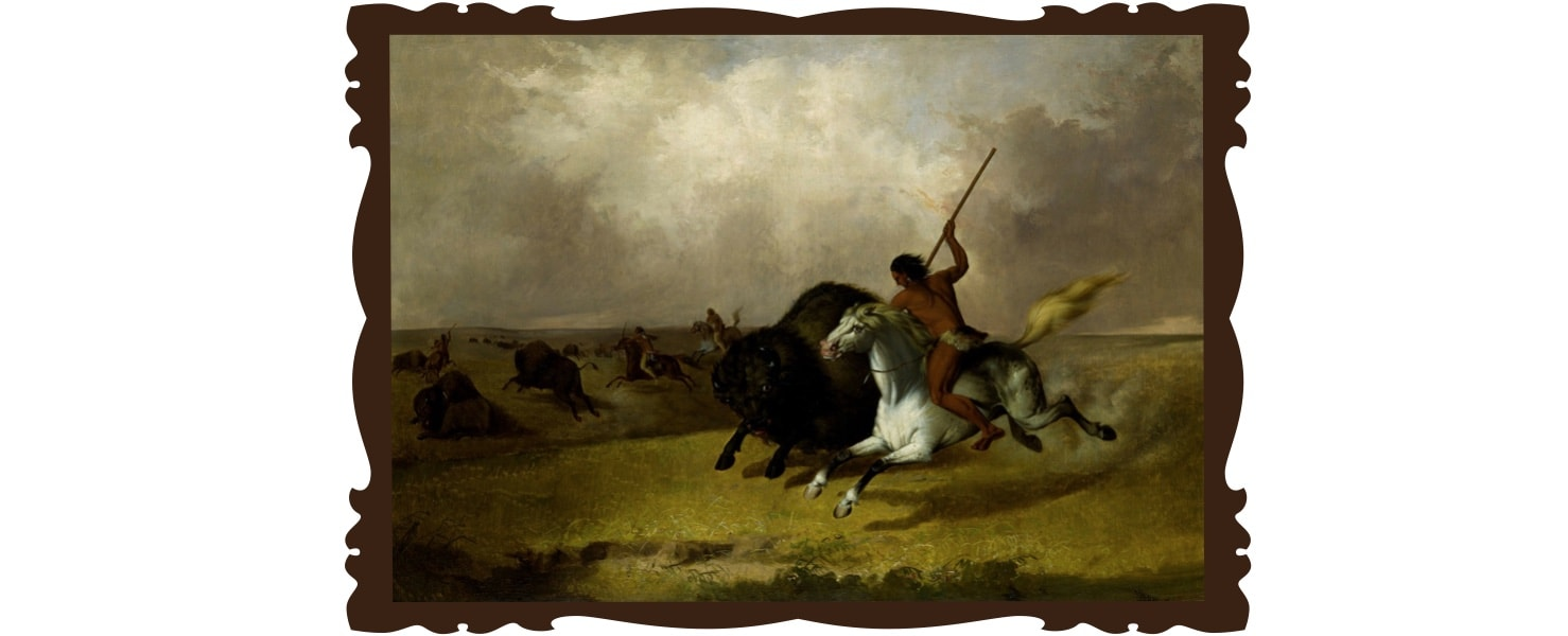 chasse aux bisons