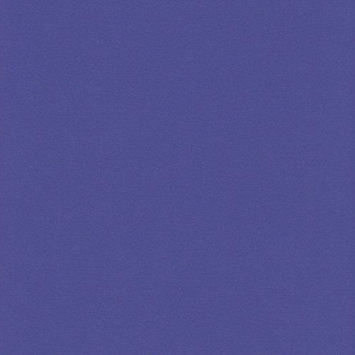 12x12 and 8.5x11 Bazzill Basics Concord Grape Four Z Cardstock