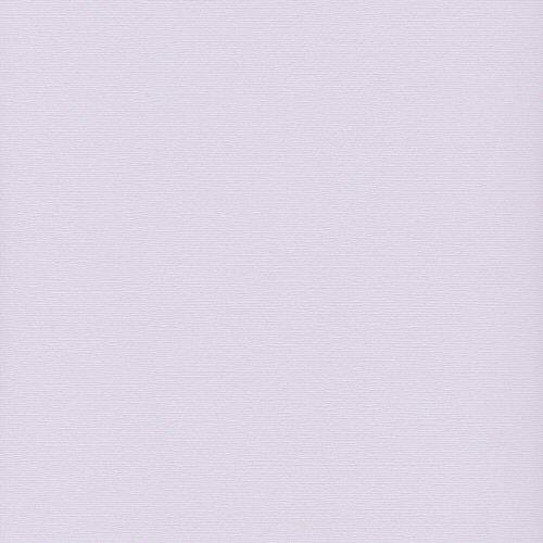 12x12 Bazzill Basics Cool Heather Four Z Cardstock