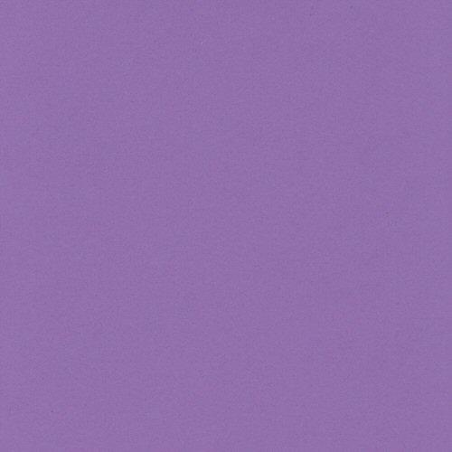12x12 Bazzill Basics Grape Delight Cardstock