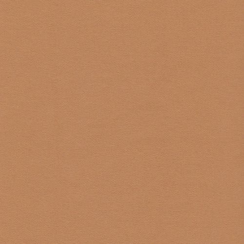 12x12 Paper Accents Honey Brown Cardstock