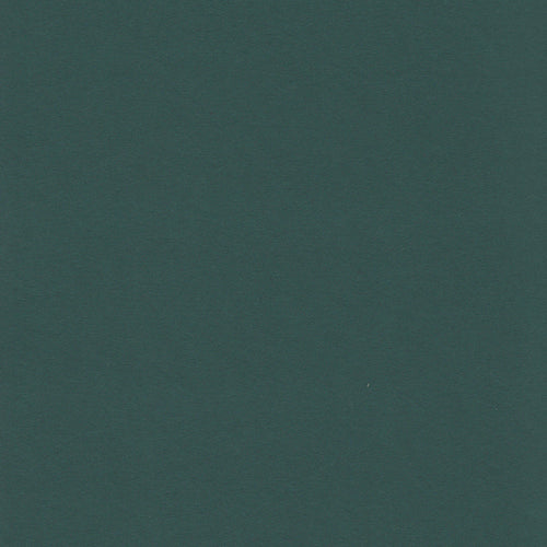 12x12 Paper Accents Hunter Green Cardstock