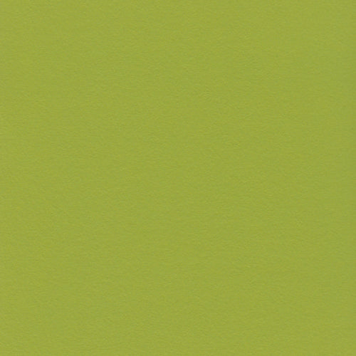 12x12 and 8.5x11 Bazzill Basics Intense Kiwi Cardstock
