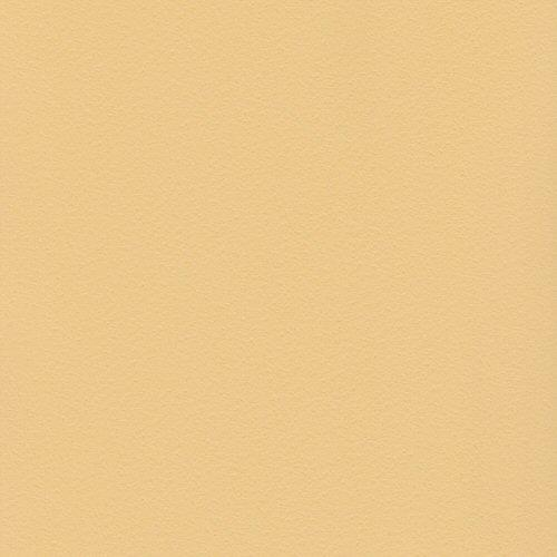 12x12 Bazzill Basics Lemonade Orange Peel Cardstock