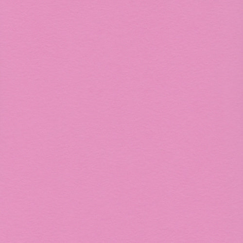 12x12 and 8.5x11 Prism Razzleberry Light Cardstock