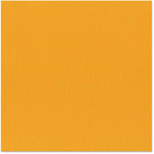 12x12 and 8.5x11 Bazzill Basics Candle Cardstock