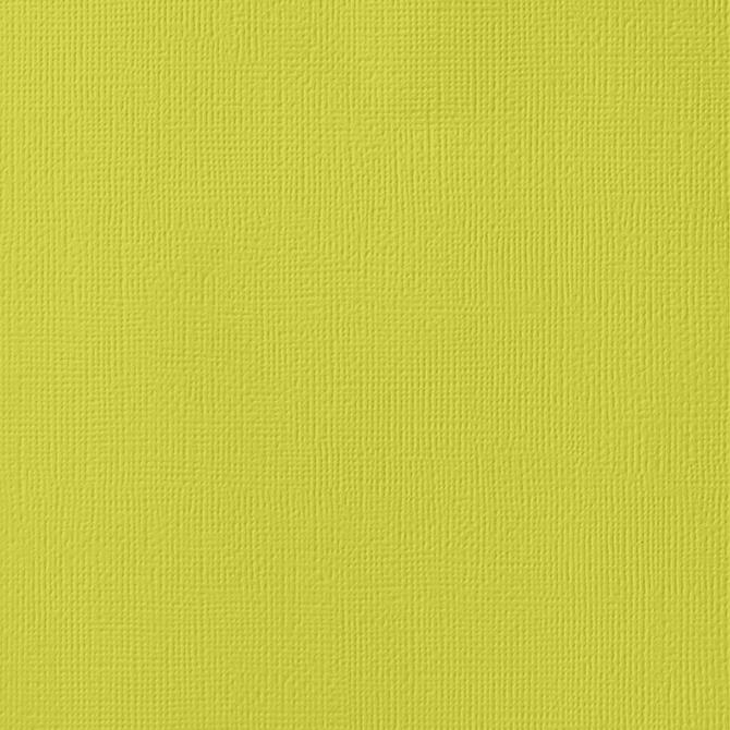 12x12 American Crafts Cardstock Textured Limeade