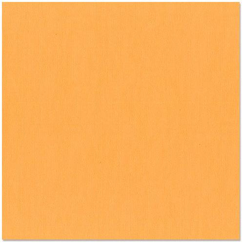 12x12 and 8.5x11 Bazzill Basics Apricot Cardstock