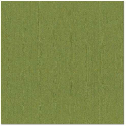 12x12 and 8.5x11 Bazzill Basics Guacamole Cardstock
