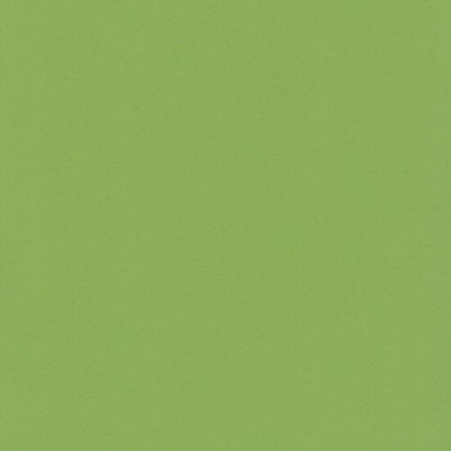 12x12 and 8.5x11 Bazzill Basics Lime Crush Cardstock