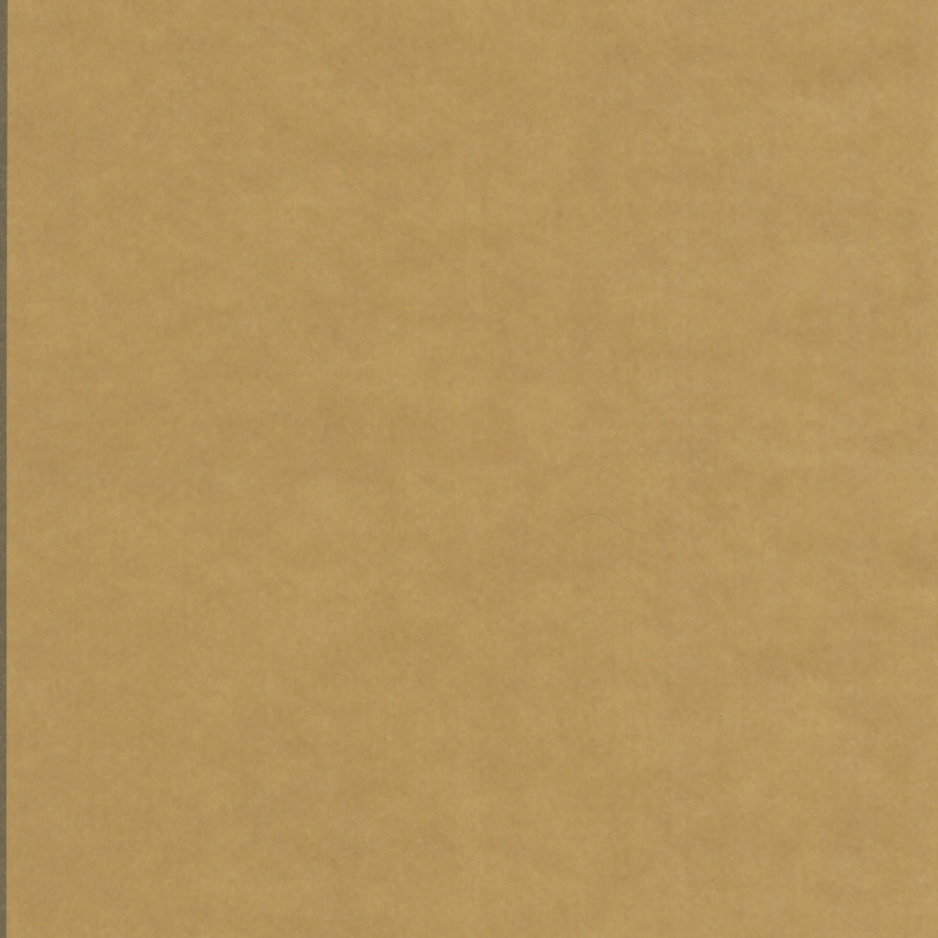 Paper Accents Vellum 8.5x11 27lb Brown