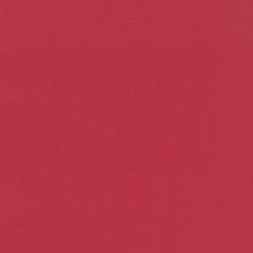 8.5x11 Color Mates Medium Autumn Red Cardstock