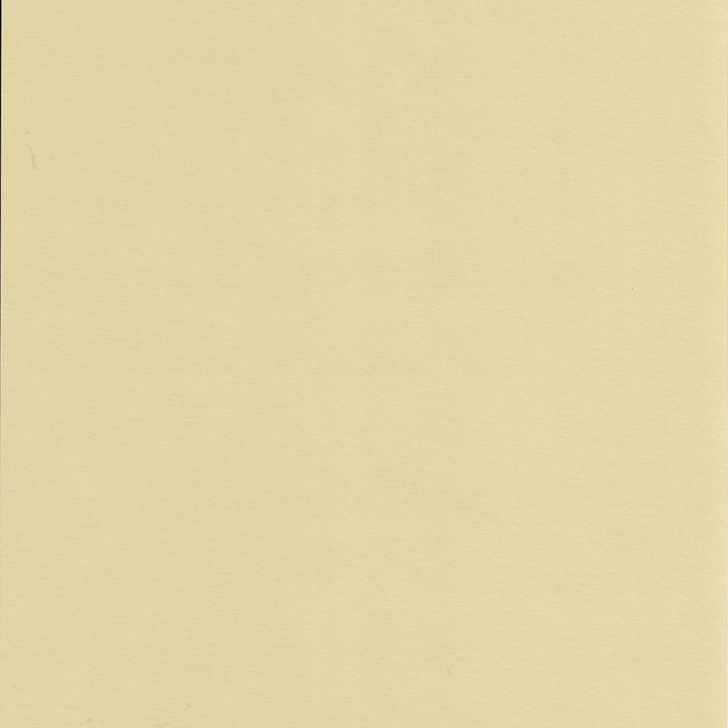 8.5x11 ColorMates Light Oudoorsy Olive Cardstock