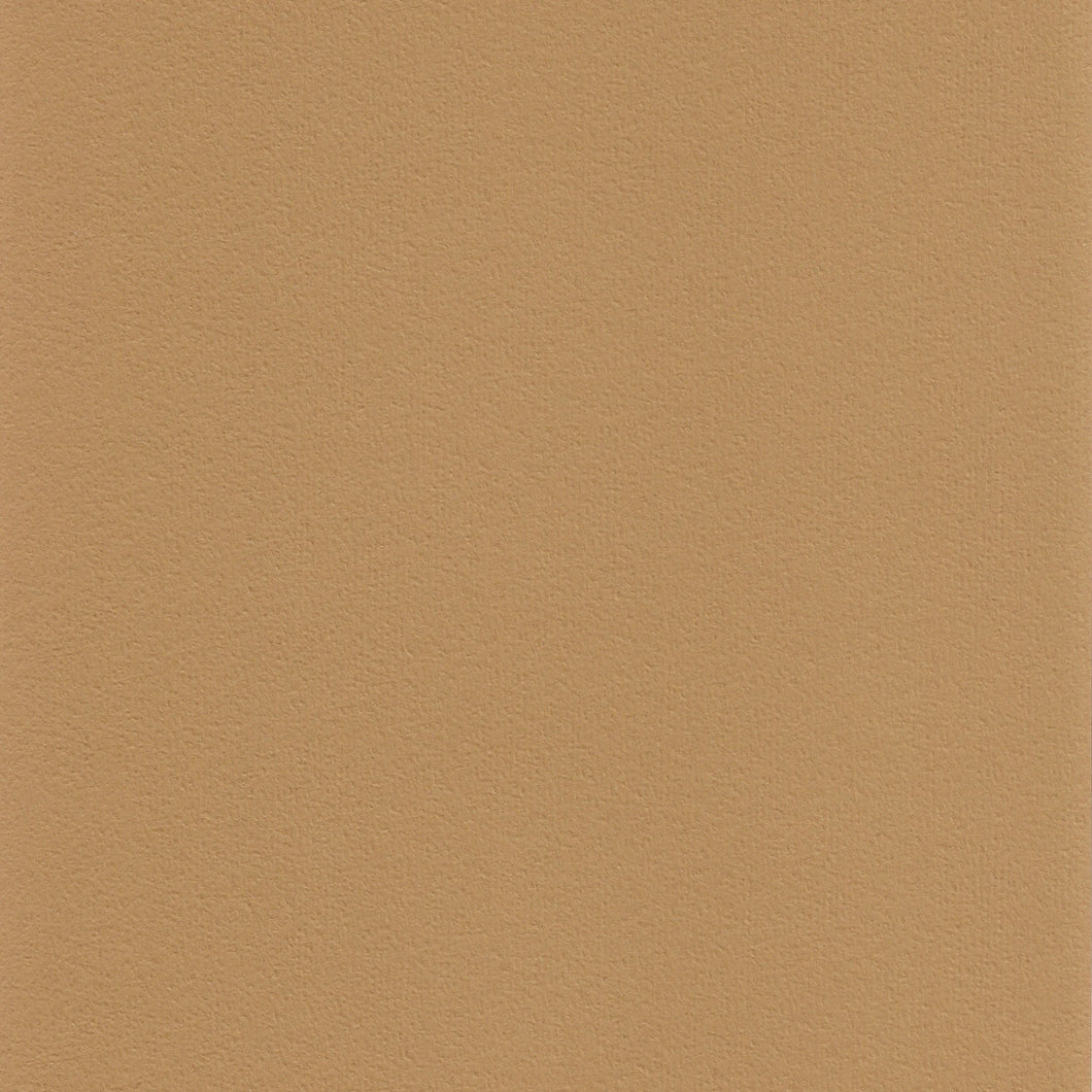 8.5x11 Bazzill Basics Rusted Orange Peel Cardstock