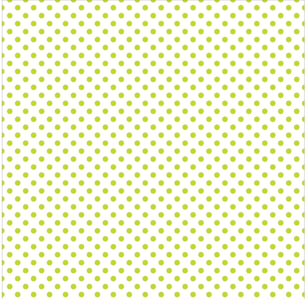 Echo Park Collection Dots & Stripes Pastel Vellum 12x12 Green Grass