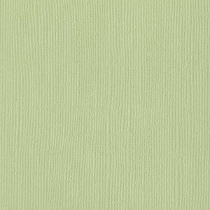 12x12 and 8.5x11 Bazzill Basics Moss Weave Cardstock