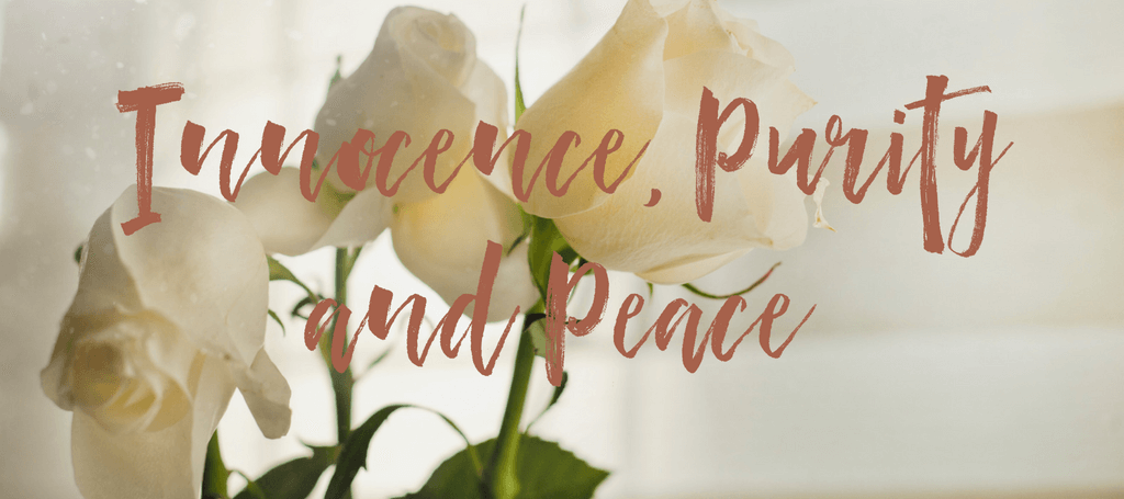 "image of white roses with text overlay reading ""Innnocence, Purity and Peace"""