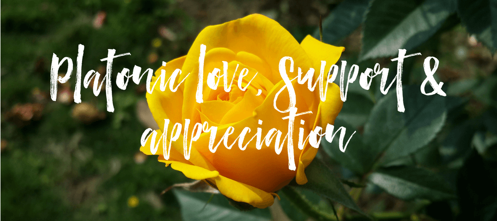 "image of yellow roses with text overlay which reads ""Platonic love, support and appreciation"""