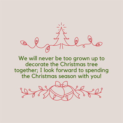 Christmas message for a sister or brother: We will never be too grown up to decorate the Christmas tree together; I look forward to spending the Christmas season with you!