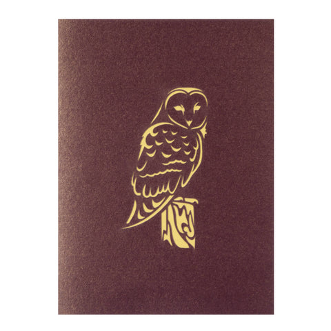 Owl Pop Up Card