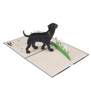Image of Black Labradors Pop Up Card fully open at 180 degrees on a white background