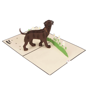 Brown Labradors Pop Up Card fully open at 180 degrees on a white surface