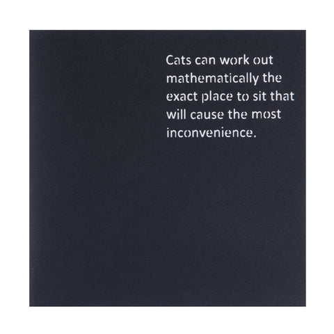 Cats Pop Up Card