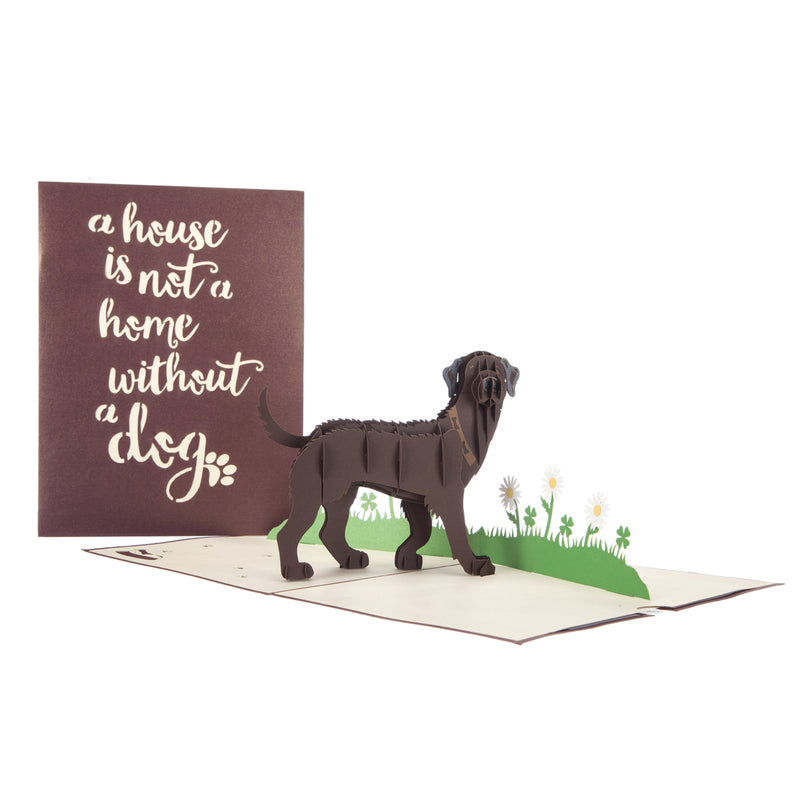 Brown Labrador Pop Up Card