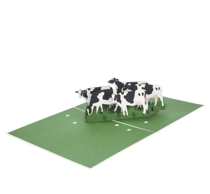 Friesian Cows Pop Up Card featuring 4 3D cows standing next to each other grazing, fully open at 180 degrees