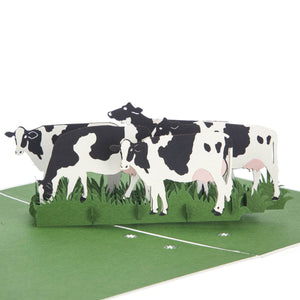 close up image of Friesian Cows Pop Up Card featuring 4 3D cows standing next to each other grazing