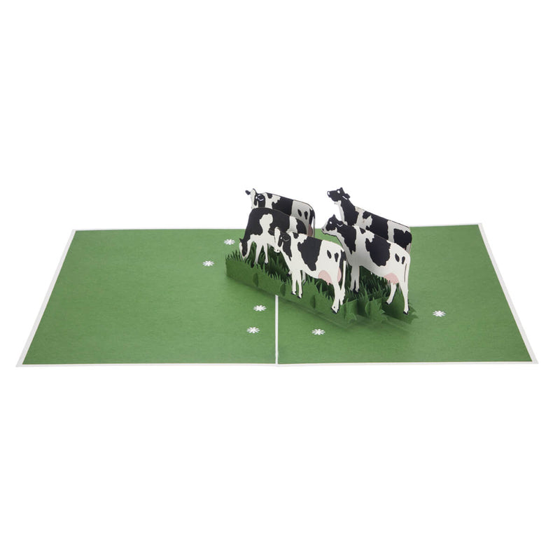 Friesian Cows Pop Up Card featuring 4 3D cows standing next to each other grazing, fully open