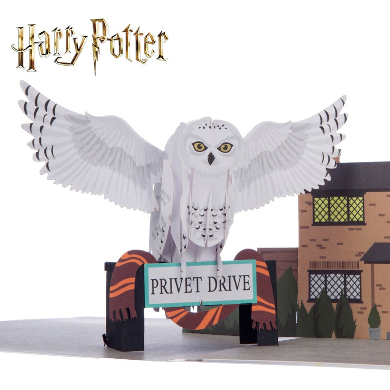 Close up image of Harry Potter Hedwig 3D Card Official Merchandise