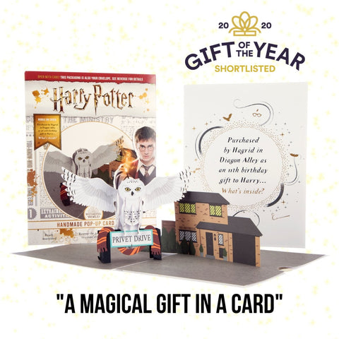 Harry Potter Hedwig Pop Up Card