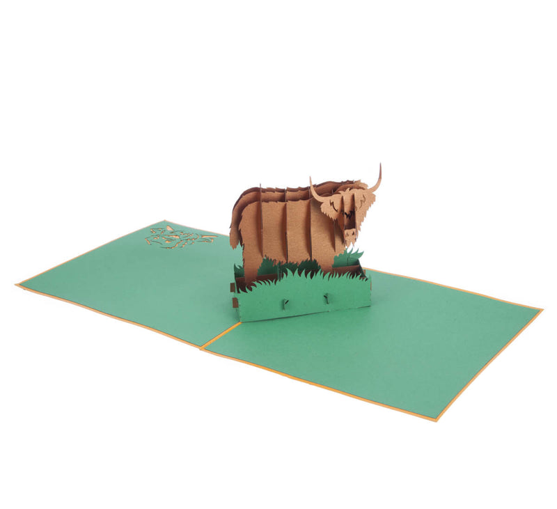 Highland Cow Pop Up Card featuring a 3D bronze highland cow standing among green grass, fully open at 180 degrees