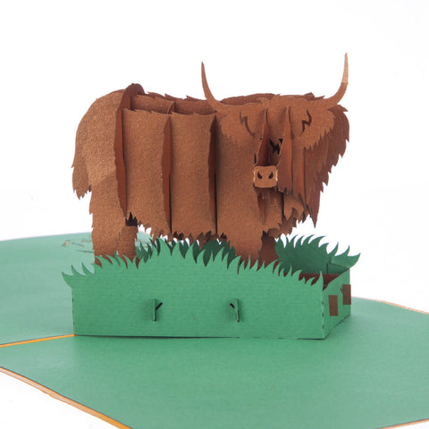 Highland Cow Pop Up Card