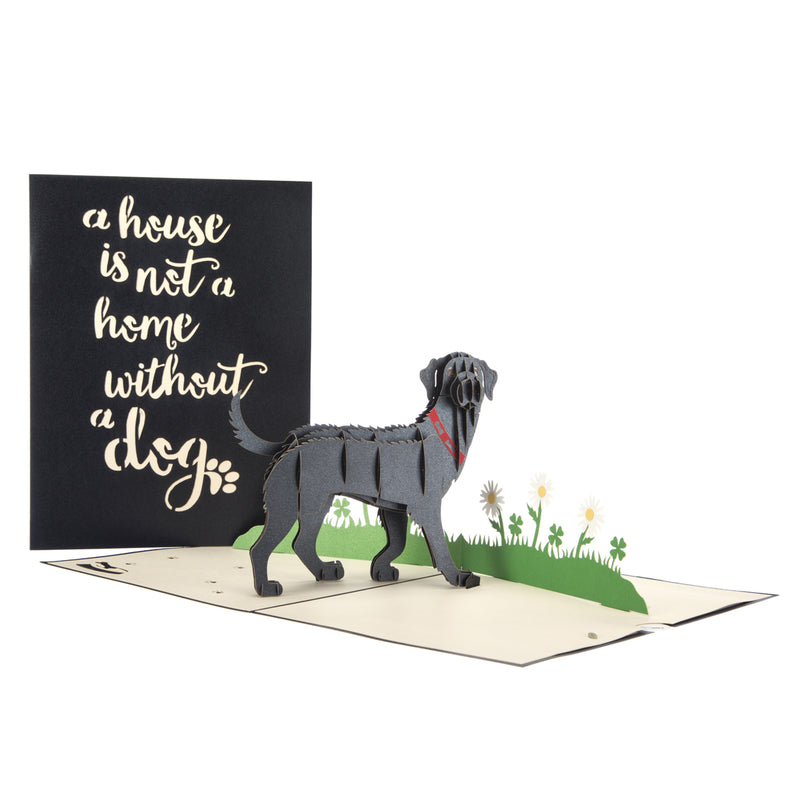Black Labrador Pop Up Card