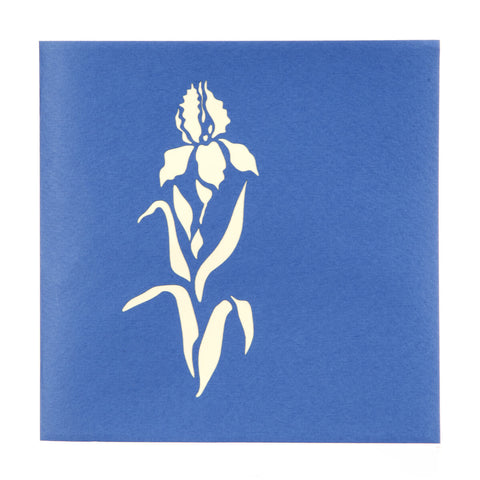 Iris Pop Up Card