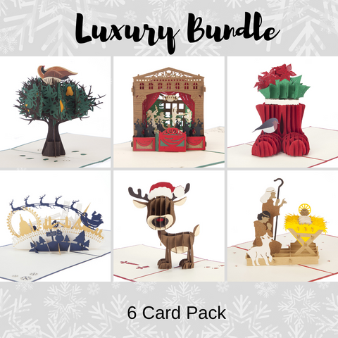 Luxury Christmas Bundle - Pack of 6