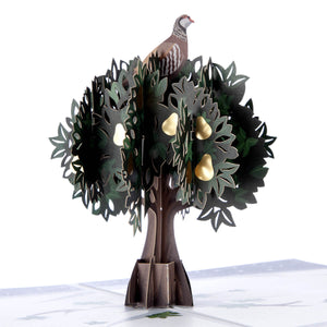 Partridge In A Pear Tree Pop Up Card For Christmas. Close Up Image