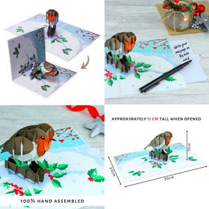Robin Christmas Pop Up Card - Christmas Card Pack of 6