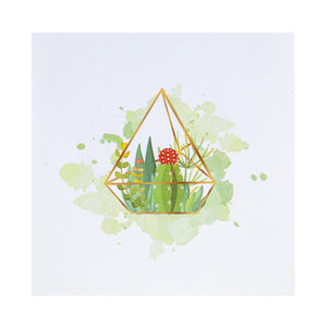 Terrarium Pop Up Card - Card Cover Image - White Card with watercolour image of succulent plants