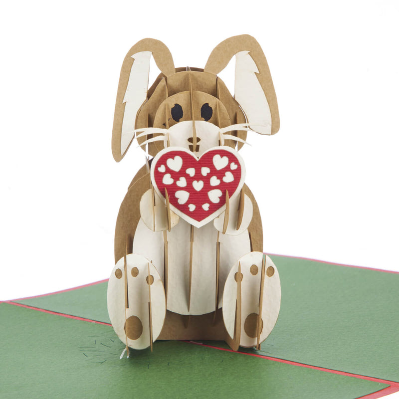 WELSH Cwtch Bunny Pop Up Card