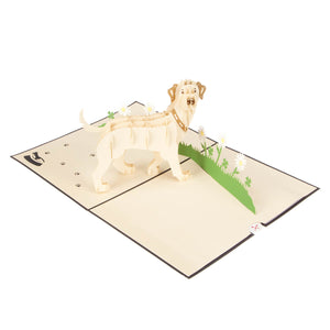 white labrador pop up card fully open at 180 degrees on a white surface