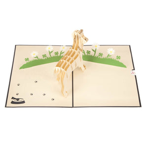 image taken from above of white labrador pop up card fully open