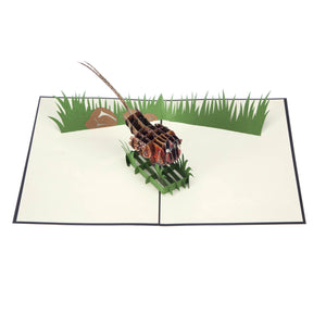 Wild Pheasant Pop Up Card