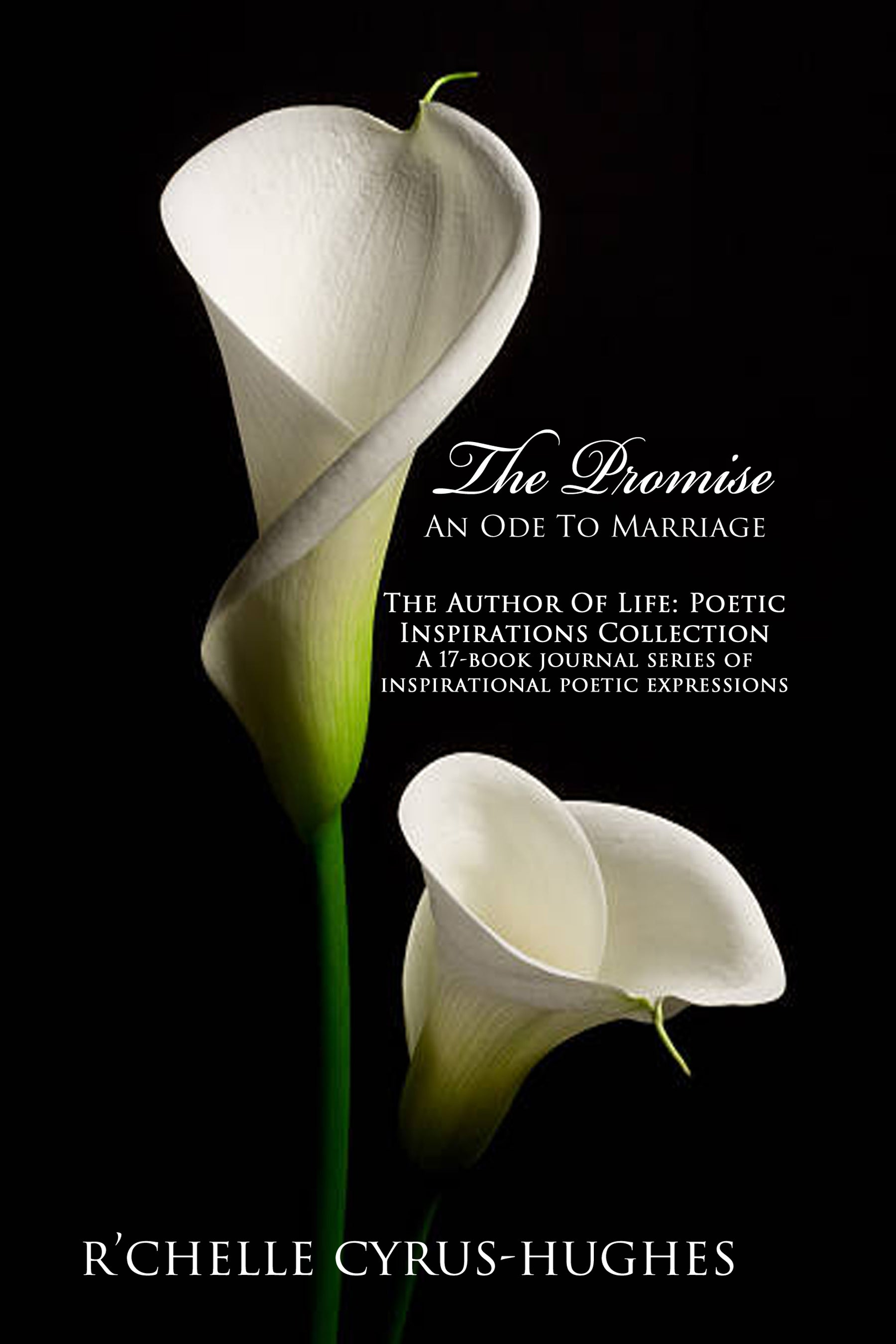 The Promise: An Ode To Marriage | Author Of Life: Poetic Inspirations Collection