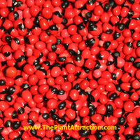 Abrus Precatorius Vine 20 Seeds, Craft Jewelry Beads, Rosary Pea