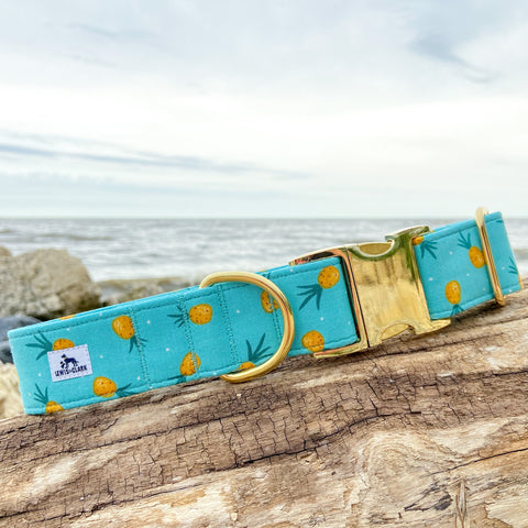Summer 2020 Collection: Pina Colada, Pineapple Dog Collar