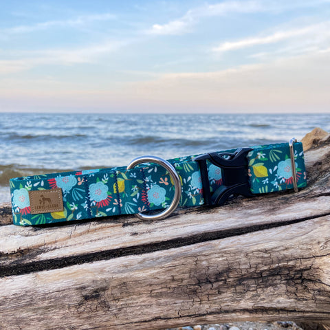 Lemon Drop Floral: Lake Life Dog Collar, Water Resistant Dog Collar, Outdoor Adventure Dog Collar