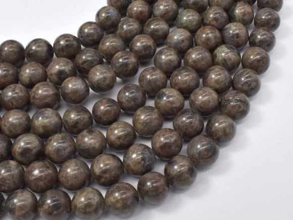 Chocolate Labradorite Beads, 10mm (10.4mm)